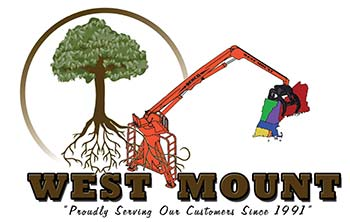 West Mount Inc.